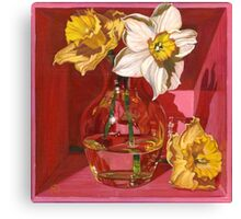 Narcissus in Pink Canvas Print