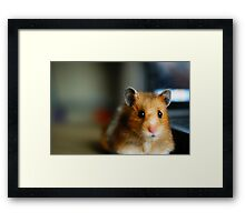 Onwards look Framed Print