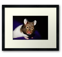 Forward look Framed Print