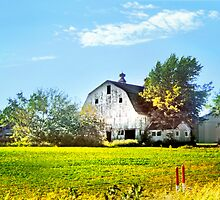 ~ Barn just down the road ~ by Nadya Johnson