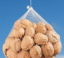 Bag of nuts by Gaspar Avila