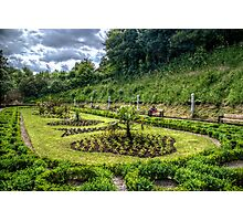 Italian Garden Photographic Print