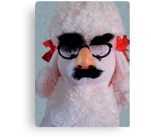Groucho, The Poodle Canvas Print