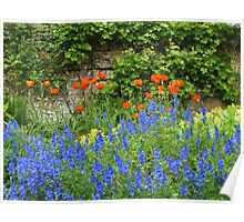 Poppies at Snowshill Manor Poster