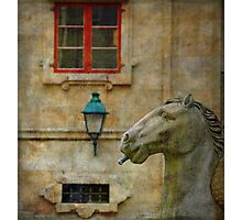Horses made of stone Photographic Print