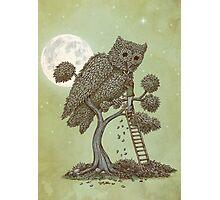 The Night Gardener Photographic Print