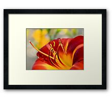 Mere color, unspoiled by meaning, and unallied with definite form, can speak to the soul in a thousand different ways. Framed Print