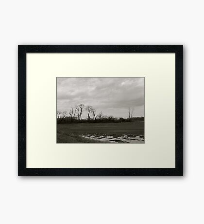 Line in the Field Framed Print