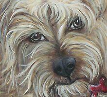 Binky by Sherry Arthur