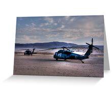 Desert Blackhawks Greeting Card
