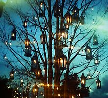 Lantern Tree by kchase