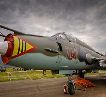 Sukhoi Fitter by Delfino