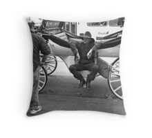 The coach driver ( and Danny Devito.) Throw Pillow