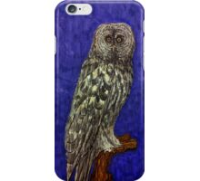 Illustrative owl at night iPhone Case/Skin