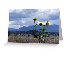 Nandewar Range, Narrabri Greeting Card