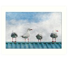 Four Seagulls on a Tin Roof Art Print
