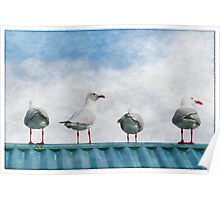 Four Seagulls on a Tin Roof Poster