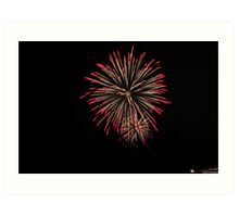 4th of july fireworks Art Print