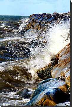 Lake Erie Beach by Sheri Nye