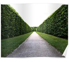 Green symmetry Poster