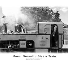 Steam Train Mount Snowdon by Isobel Embleton
