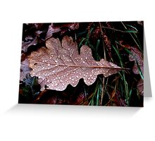 Oak leaf in the rain. Greeting Card