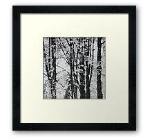 Specks of Light, mixed media on canvas Framed Print