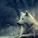 wolf by lykos1988
