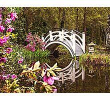 White Arched Foot Bridge Photographic Print