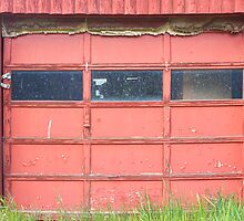 Red Garage Door by Bo Insogna