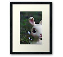 Ball Jointed Doll- Rabbit Framed Print