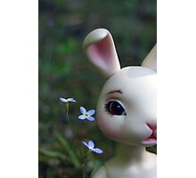 Ball Jointed Doll- Rabbit Photographic Print