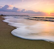 Patience, OBX by Michael Treloar