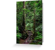 Sentinel Trees, Rodriguez Pass Stairway Greeting Card