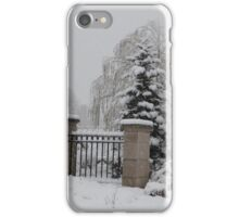Winter's Solace iPhone Case/Skin