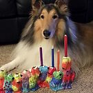Rough Collie Happy Hanukkah by Jan  Wall