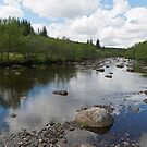 Blackwater River by diggle