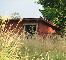 Retired Shed by PicsbyJody