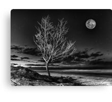 Silvery June Moon Canvas Print