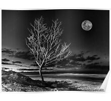 Silvery June Moon Poster