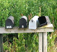Empty Mailboxes by PicsbyJody