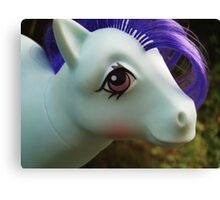Pony Face Canvas Print