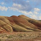 The Painted Hills by TeresaB