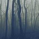 In the forest by lumiwa