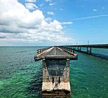 Old Seven Mile Bridge, FL by Ludwig Wagner