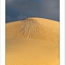 Tears on a Dune by donnnnnny