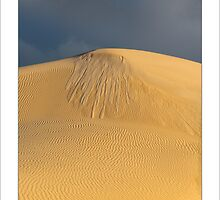 Tears on a Dune by donnnnnny