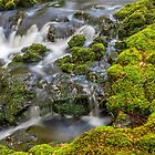 green waters 3 by bluetaipan
