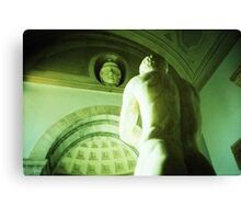 A Sturdy Back - Lomo Canvas Print