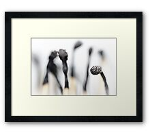 Who is fooling who?.... Framed Print